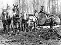 Gilbert Breklhus, Otto Stubb, and Mike Prestlien hauling logs with a team of horses, Silvana, Washington, ca 1915 (WASTATE 565).jpeg