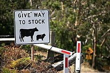 Livestock - Wikipedia