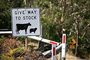 "Livestock - This Australian road sign uses the less common term ""stock"" for livestock."