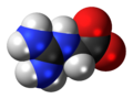 Glycocyamine-zwitterion-3D-spacefill.png
