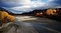 Gold on the Shotover River. Otago (12115047103).jpg