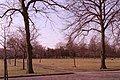 Grassy area and trees, Alexandra Park, Moss Side - geograph.org.uk - 633153.jpg