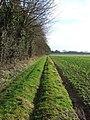 Green field boundary - geograph.org.uk - 670697.jpg