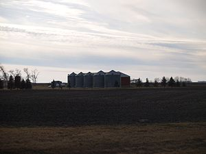 Russia Township, Polk County, Minnesota - Grain elevators at Greenview