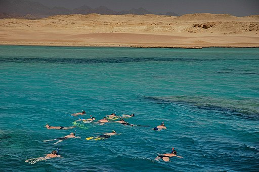 Group Snorkel Ras Mohammed - panoramio