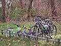 Gruppe Fahrräder Januar 2015.JPG