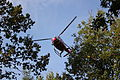 Hélicoptère WRC.JPG