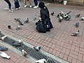 HK 中環 Central 德輔道中 39 Des Voeux Road Central 德忌利士街 Douglas Street freedom pigeons December 2019 SS2 06.jpg