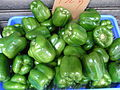 HK SYP Best of Best Vegetable Green 燈籠椒 bell pepper Aug-2012.JPG