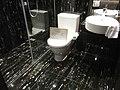HK Shatin 大圍 溱岸8號 Riverpark decorated showflat bathroom Dec-2012.JPG