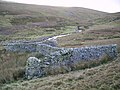 H Shaped Sheepfold - geograph.org.uk - 287534.jpg