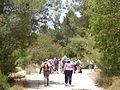 Hadassah Trail P1150534.JPG