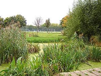 Haggerston - Haggerston Park. (October 2005)