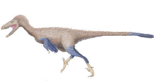 Hand drawn Troodon