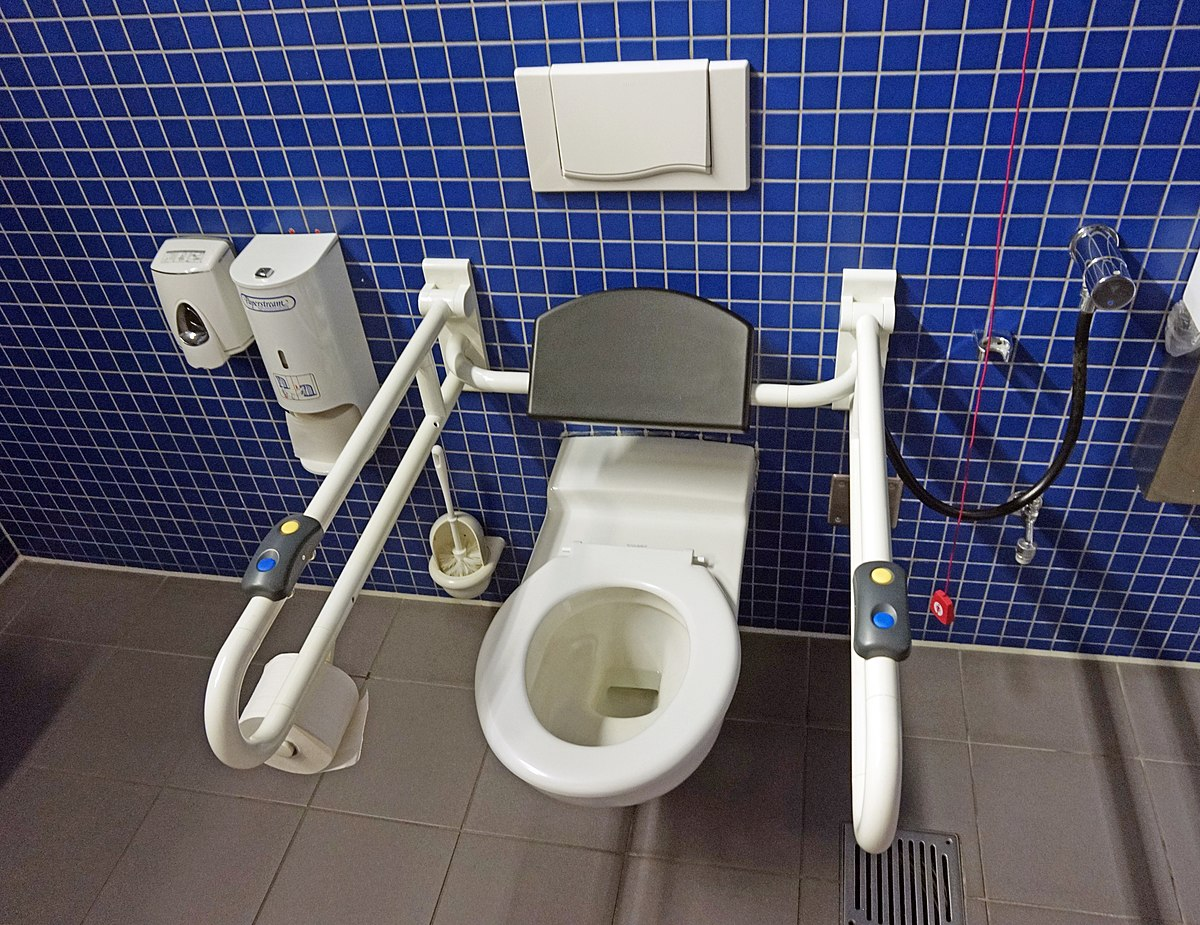 Accessible toilet - Wikipedia