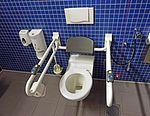 Handicap toilet 2.jpg