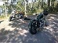 Harley-Davidson, Hostnäs, Raasepori (Raseborg).jpg