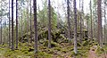Haukkavuori in Korpilahti.jpg