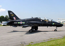 Hawk.trainer.arp.750pix.jpg