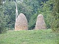 Hay-stacks at a Moldovan village.jpg