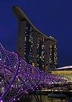 Helix Bridge Night 2 (31776292860).jpg
