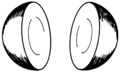 Hemispheres1 (PSF).png