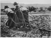 Heroic Women of France. Hitched to the plough, cultivating the soil. All agriculture rests upon their shoulders. Uncompl - NARA - 512429