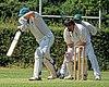 Hertfordshire County Cricket Club v Berkshire County Cricket Club at Radlett, Herts, England 034.jpg