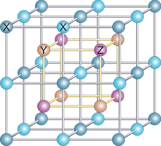 Heusler compound -  In the case of the full Heusler compounds with formula X2YZ (e. g., Co2MnSi) two of them are occupied by X-atoms (L21 structure), for the half-Heusler compounds XYZ one fcc sublattice remains unoccupied (C1b structure).