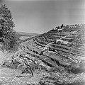 Heuvels en terrassen met olijfgaarden bij Ain Karem (Ein Kerem), Bestanddeelnr 255-0429.jpg
