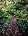 Highdown Gardens, Worthing, path to the Millenium Garden 1.jpg