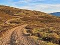 Hill track near Creag Odhar - geograph.org.uk - 688064.jpg