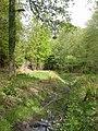 Hinton Park, Shears Brook - geograph.org.uk - 1295602.jpg