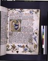 Historiated initial of the Nativity; border includes a moth, as well as the side view of a pink rose, whose design originates in engraved playing cards (NYPL b12455533-426678).tif