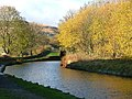 Huddersfield canal in the direction of Marsden - geograph.org.uk - 285017.jpg
