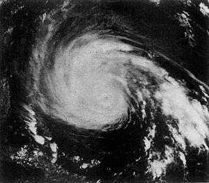 BGE Offers Hurricane Preparedness Tips