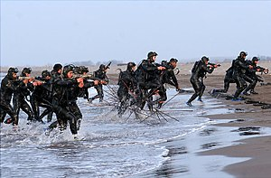 Islamic Revolutionary Guard Corps - IRGC's Naval special forces, S.N.S.F.