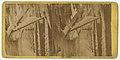 Ice Scenes at the Burning of Jayne Building, Chestnut Street, Philada, 1872 (9308153573).jpg