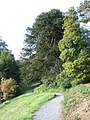 In the gardens of Greenway House - geograph.org.uk - 1540133.jpg
