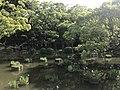 Iris Pond of Kashii Shrine 3.jpg