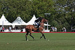 Jaeger-LeCoultre Polo Masters 2013 - 31082013 - Match Legacy vs Jaeger-LeCoultre Veytay for the third place 29.jpg