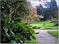 January Frost Botanic Garden Freiburg Grand Panorama - Master Botany Photography 2014 - series Germany Diamond pictures - panoramio.jpg