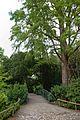 Jardin des Plantes - 2016-08-09.jpg