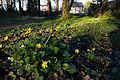 Jardins familiaux des prairies Saint-Martin, Rennes, France-11.jpg