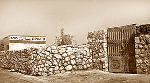 Jerusalem Biblical Zoo - The zoo in the 1940s, probably on Shmuel HaNavi Street