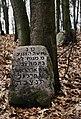 Jewish Cemetery Kock IMGP2382.jpg