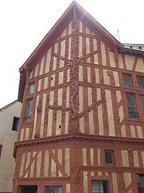 Joigny - Maison arbre de Jessé 1.jpg
