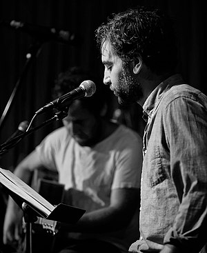 Josh Radnor - Radnor and Ben Lee performing