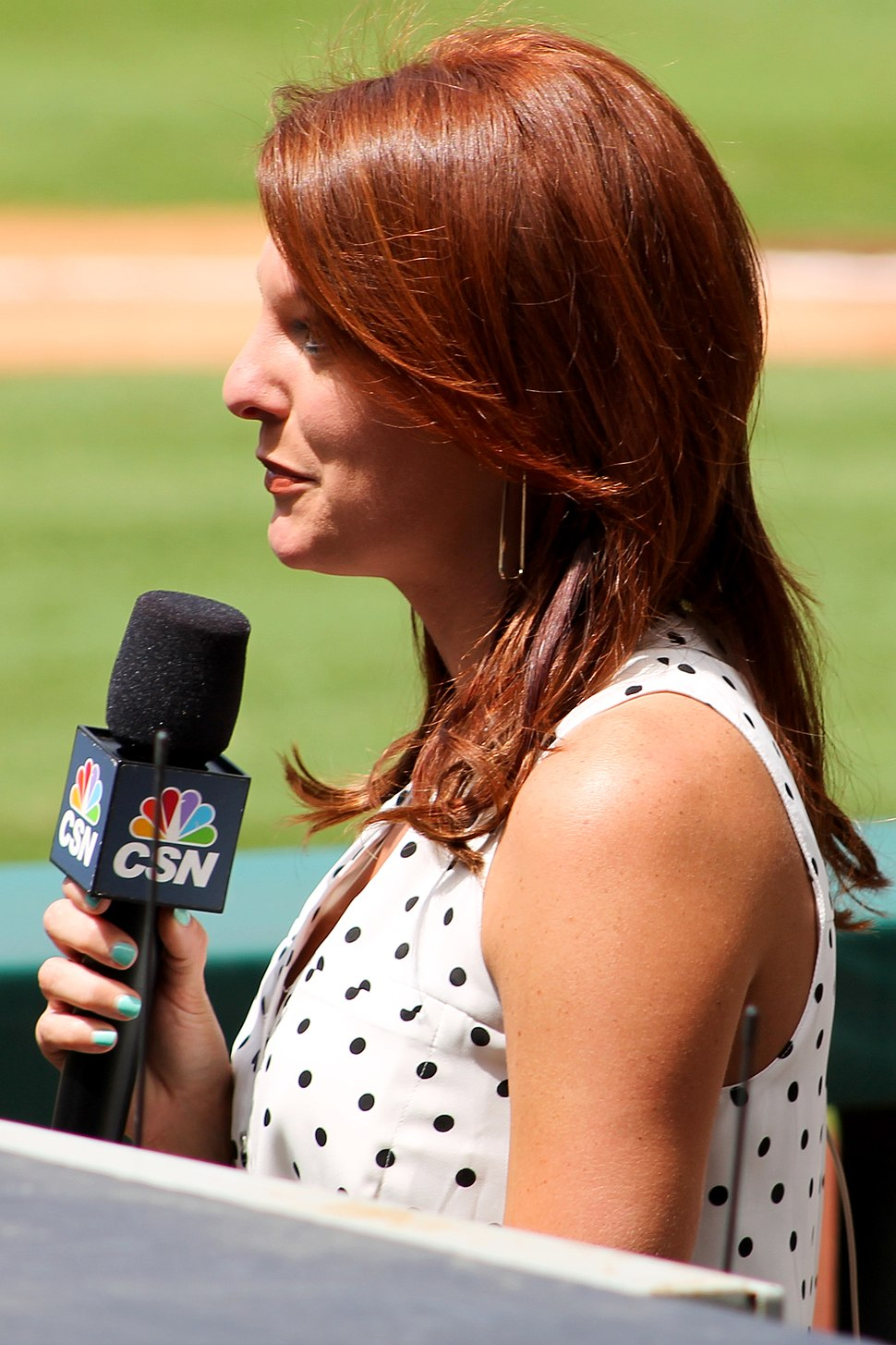 Julia Morales of CSN Houston in March 2014