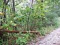 KNOB gate - panoramio.jpg